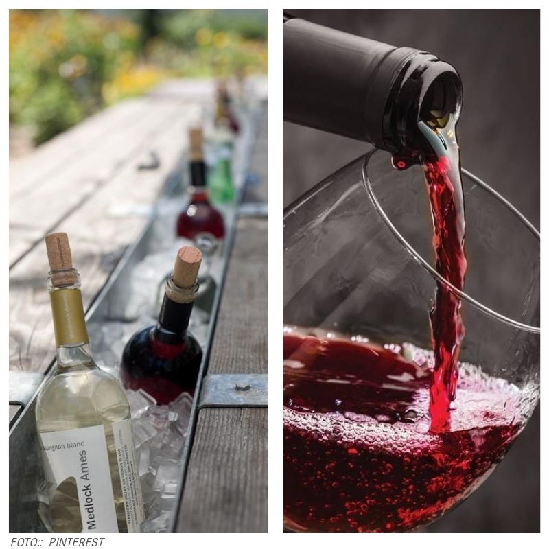 livevinhos1 - #LiveSeculus: o que você precisa saber sobre vinhos